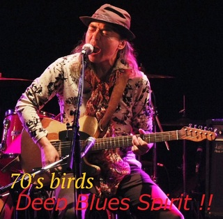 70's birds.jpg